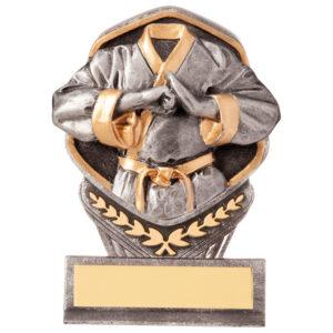 martial arts trophy