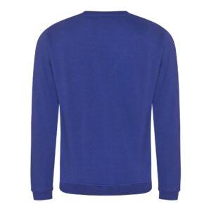royal blue sweatshirt back
