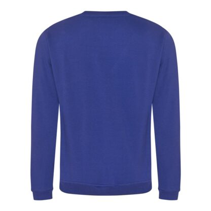 royal blue sweatshirt back